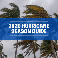 Apopka 2020 Hurricane Season Guide. Palm trees blowing in a storm.