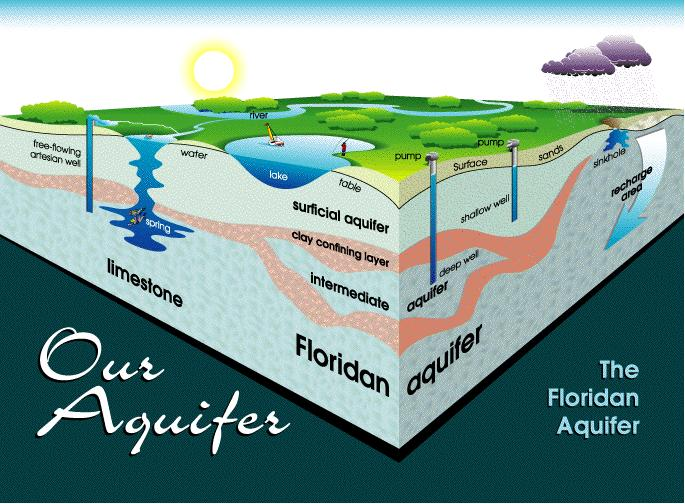 Diagram of the Floridan Aquifer.